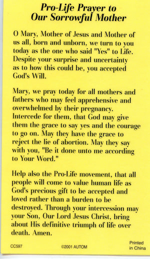 PRO LIFE PRAYER  - LAMINATED HOLY CARDS- QUANTITY 25 PRAYER CARDS