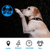 Smart Gps Dog Collar – Real-time Tracking – Android & Iphone Apps