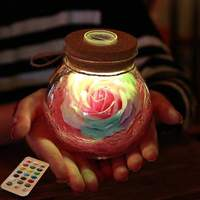 Discounted Lamp Pink Rose Light Bottle