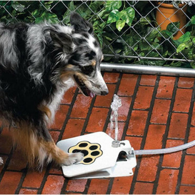 "Outdoor Trouble-Free Pet Drinking Doggie Activated Water Fountain - 41"" Hose"
