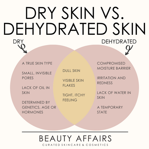 Dry Skin or Dehydrated Skin Graphic