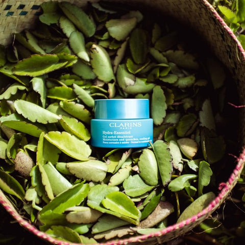 Clarins Hydra Gel Essentiel on a bed of leaves