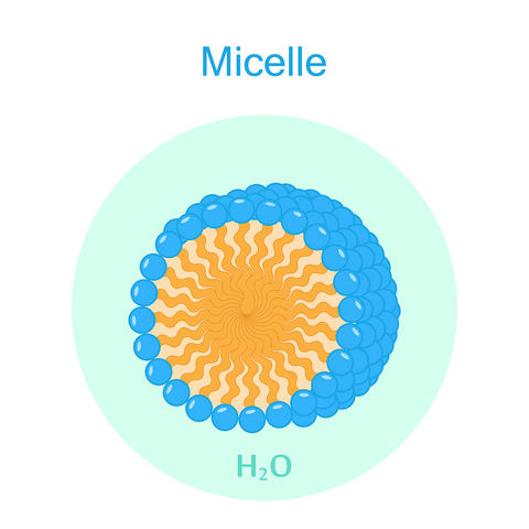 Illustration of micelle