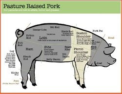 Pork Cuts for Whole and Half Hogs at Marble Creek Farmstead in Sylacauga, AL