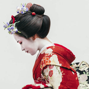 Geisha with wonderful Kimono