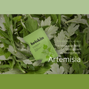 [Briskin] Origin Nature Mask 01 Mugwort (10ea)