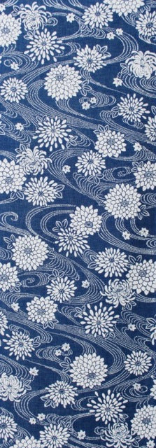 Chrysanthemum - Blue