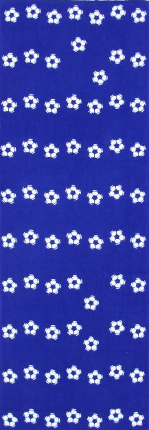 Soccer ball (blue)