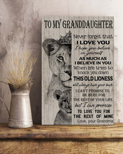 Grandma To My Granddaughter Poster Canvas Never Forget That I Love You I Hope You Believe in Yourself As Much As I Believer In You Down This Old Lionness Will Always have Your Back