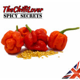 10 Super Hot Trinidad Moruga Scorpion Chilli Pepper Seeds