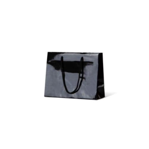 Black Small Gloss Paper Bag 200mmx 250mm
