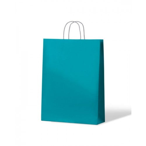 Blue Medium Paper Carry Bags