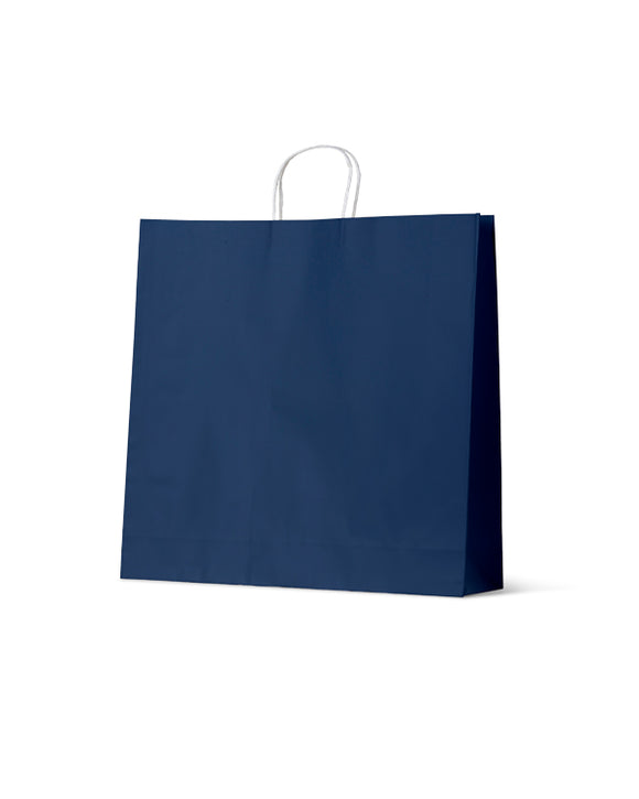 Earth Collection Extra Large Navy Paper Carry Bags