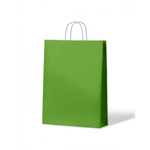 Green Medium Paper Carry Bags