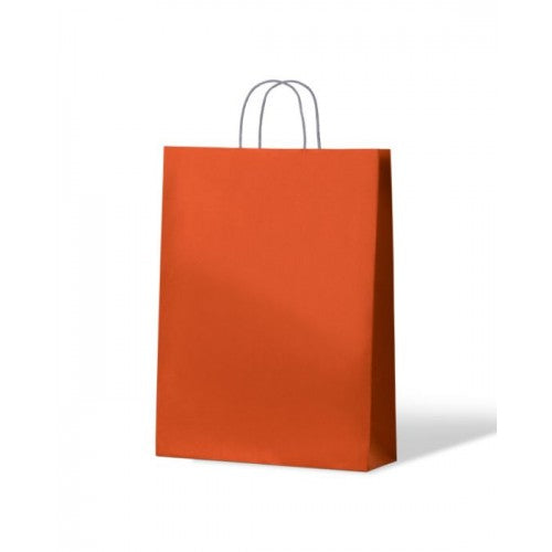 Orange Medium Paper Carry Bags