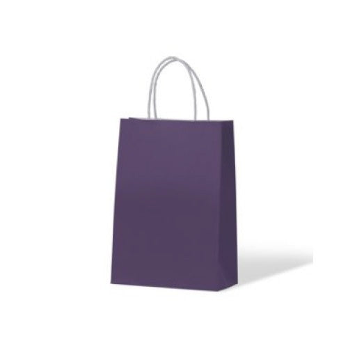 Purple Junior Paper Carry Bags