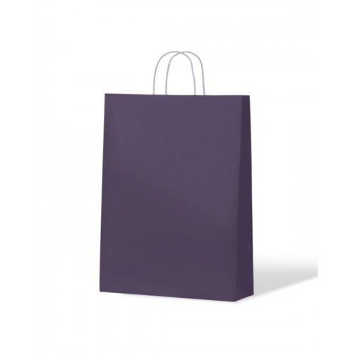 Purple Medium Paper Carry Bags