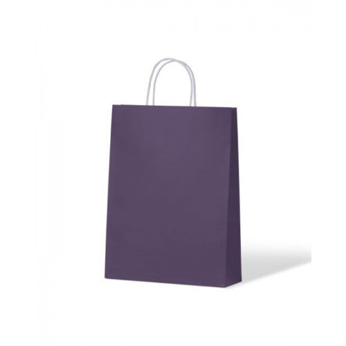 Purple Small Paper Carry Bags