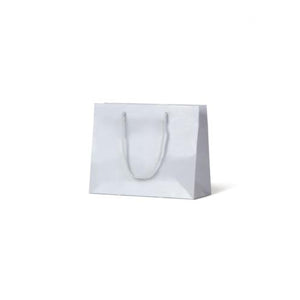 White Small Gloss Paper Bag 200 mm x 250 mm