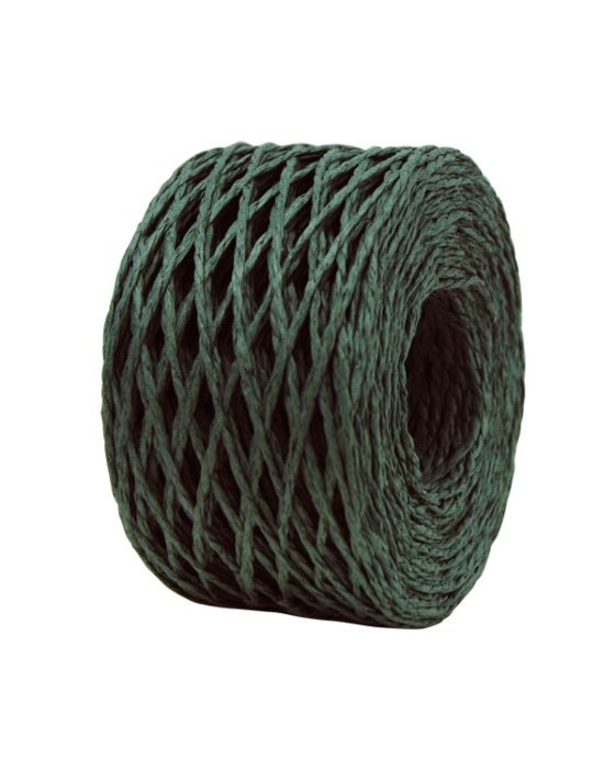 Paper Twine 2 mm x 100 Metres Forest Green