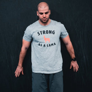 Strong as a Lama Men's T-Shirt Grey-Dumb & Dumbbell
