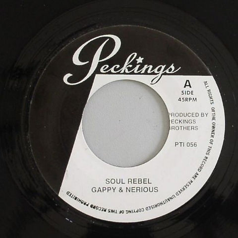 "Gappy & Nerious / Mikey Spice - Soul Rebel / Roller Coaster 7"" Vinyl"