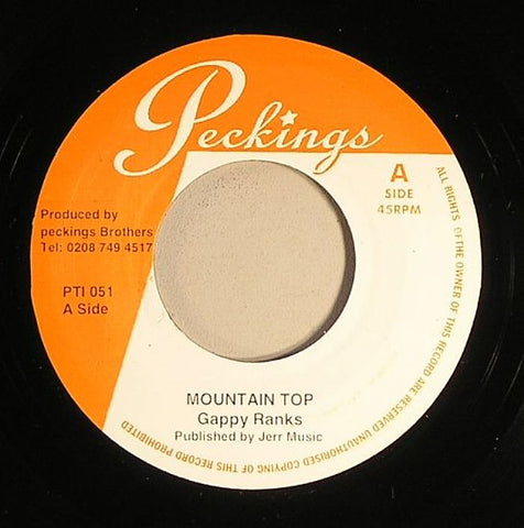 "Gappy Ranks / Jah Mali - Mountain Top / Love For Each Other 7"" Vinyl"