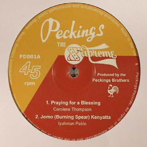 "Praying For A Blessing 12"" Vinyl"