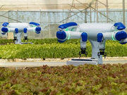 Photo of a two agriculture robot at a greenhouse