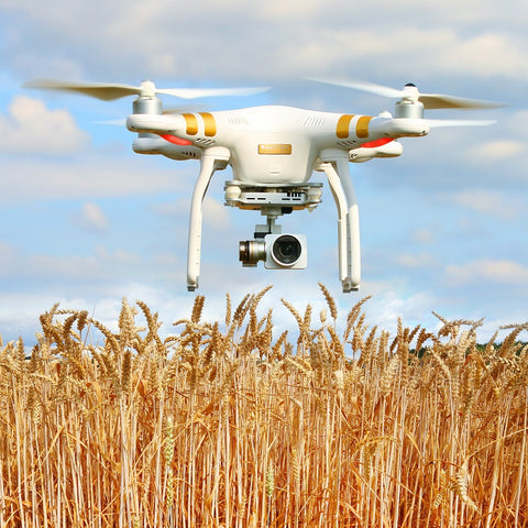 Photo of a drone in the field