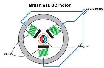 Drawing of a brushless DC motor (BLDC)