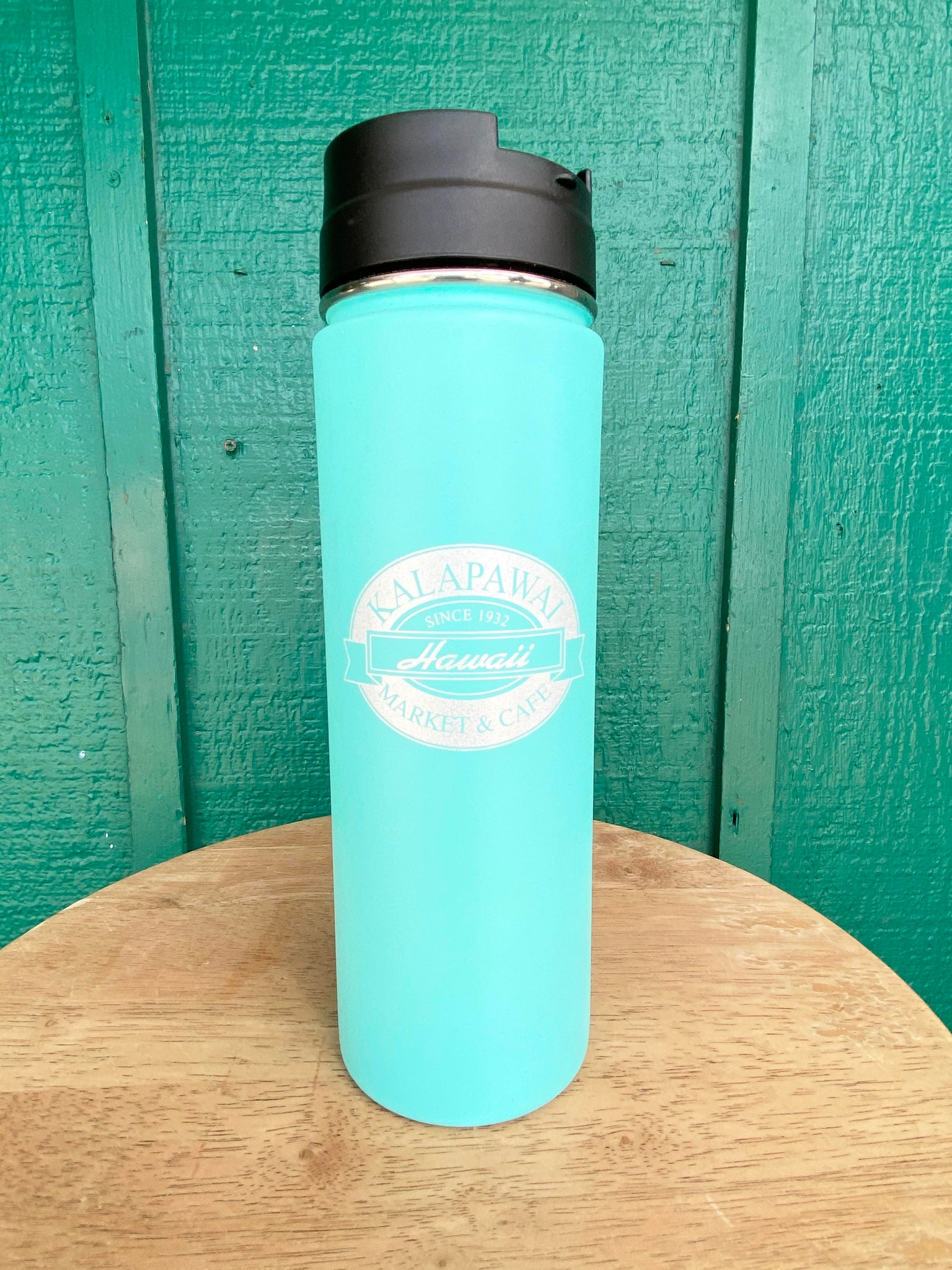 H2Go 20oz Insulated Metallic Water Bottle