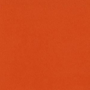Bazzill Cardstock - Bazzill Orange