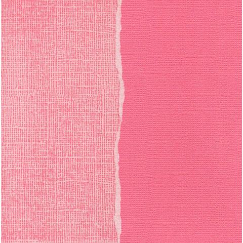 Core'dinations Cardstock - In The Pink