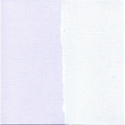 Core'dinations Cardstock - Blue Lilac