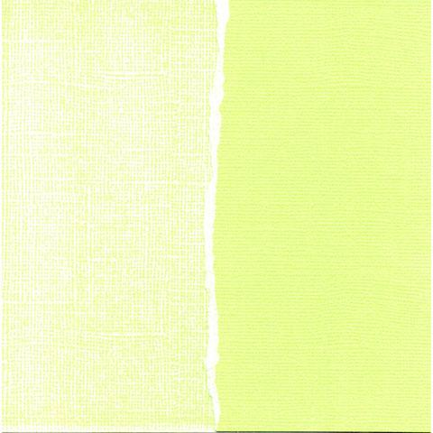 Core'dinations Cardstock - Apple Green