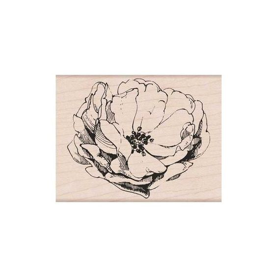 HERO ARTS - Antique Rose_mounted K6135
