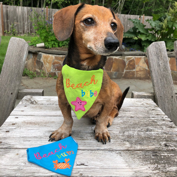 "Dog modeling ""beach Babe"" bandana by snugglepuppyapplique.com"