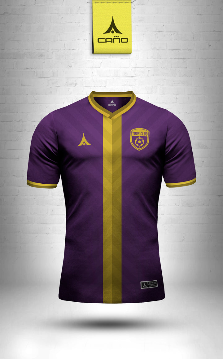 Nice in purple/gold