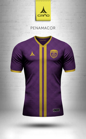 Penamacor in purple/gold