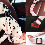SAFE-PET Adjustable Cat Seat Belt Offer