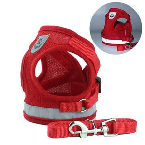 Reflective Safety Harness and Leash Set (For XXXS to M Dogs)