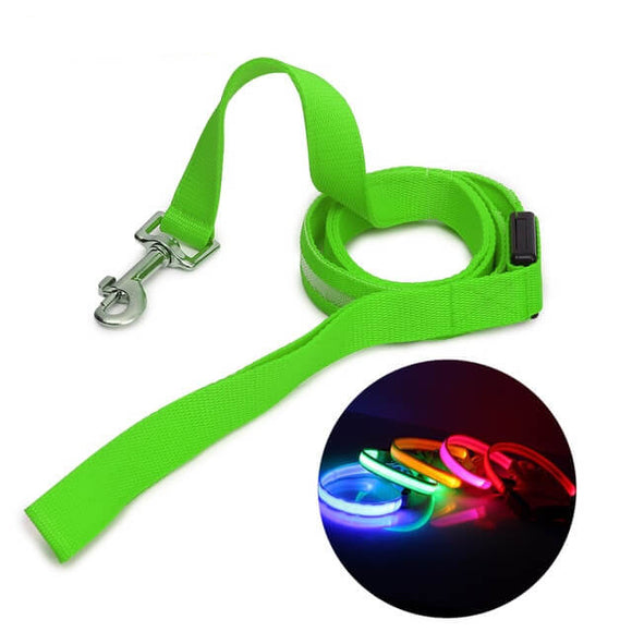 Luminous LED Leash And Collar safe at night colors high quality nylon size medium large