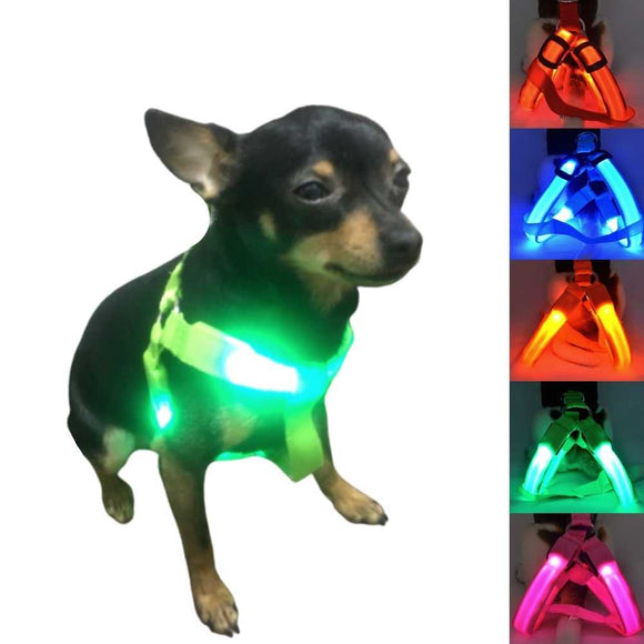 Light Up Safe-At-Night Dog Harness