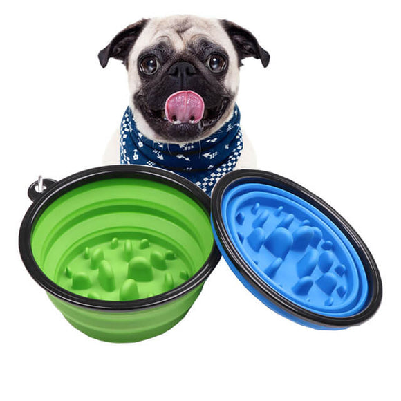 Portable Anti-Gulp Slow Feeder Dog Bowl