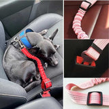SAFE-PET Adjustable Dog Seat Belt