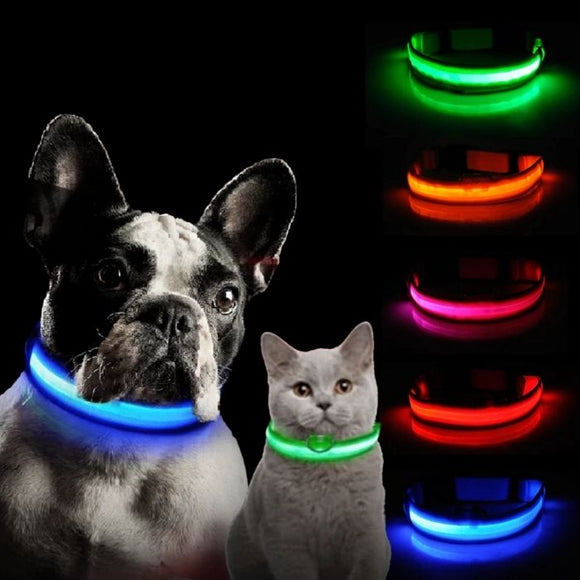 Light Up Safe-At-Night Pet Collar