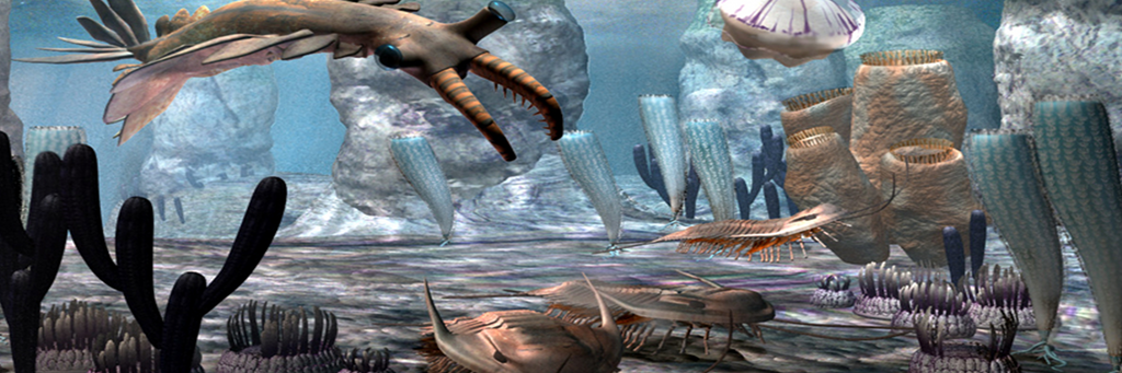 Darwinian Evolution | Plausible or Not? | The Cambrian Explosion