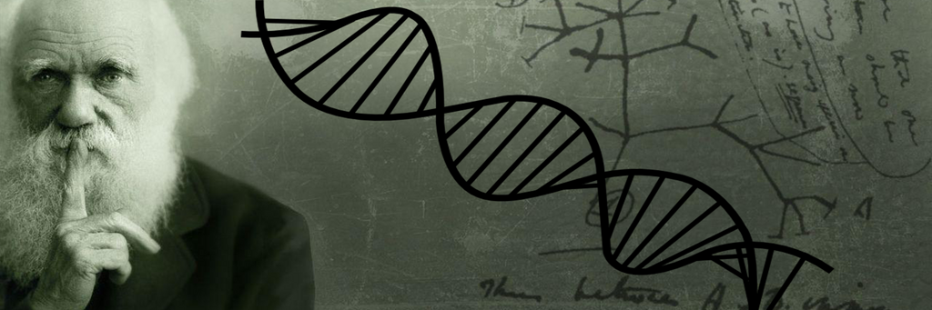 Darwinian Evolution | Plausible or Not? | Chemistry & DNA