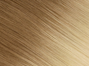 #8/613 (Ombré) | Machine Tied Weft - EXTRA HAIR EXTENSIONS